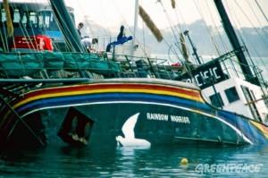 Le Rainbow en baie d'Auckland