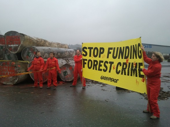 Futur volé par l'exploitation forestière en République ...