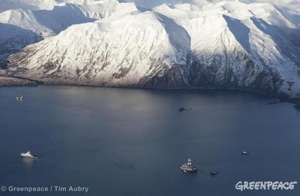 Arctique en danger