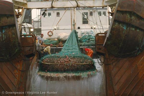 Santa Cristina - Bottom Trawler Tour 2005