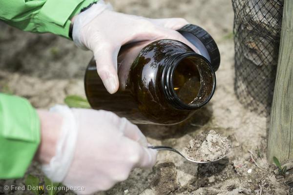 Christiane Huxdorff, expert chez Greenpeace, prélève des extraits de sol et d'eau dans une exploitation de pommes, à la recherche de pesticides.