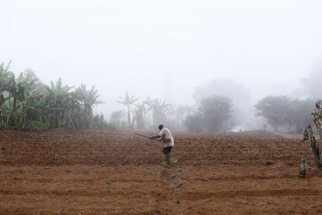Un fermier sur ses terres agricoles, près du parc national Obo. Plusieurs milliers de fermiers ont perdu leurs terres à cause des plantations de palmiers à huile. Cette situation les incite à grignoter du terrain au-delà des frontières de la réserve naturelle du parc Obo. © Micha Patault / Greenpeace