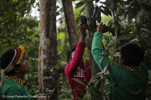 La communauté indigène Ka'apor dans la forêt amazonienne