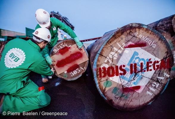 Activistes en action dans le port de Caen pour dénoncer l'arrivée de bois illégal d'Afrique.