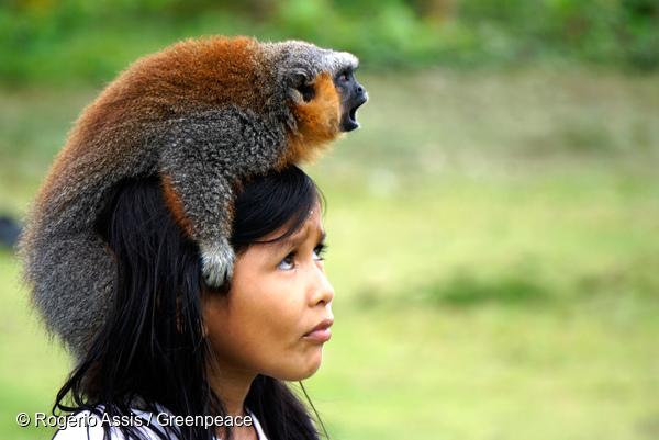 Un enfant Munduruku avec un singe, devant le village Sawré Muybu