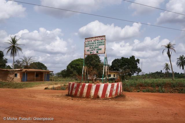 Entrée de la Socapalm au Cameroun, une filliale de la Socfin