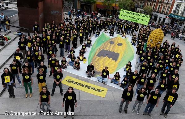 Manifestation de Greenpeace contre les OGM à Madrid (Espagne), en avril 2010.