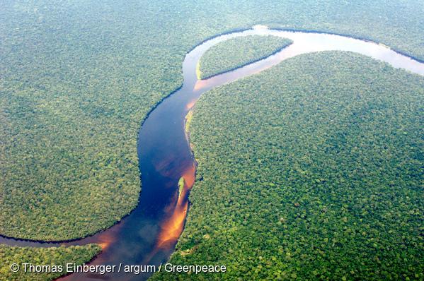 Vue aérienne de la forêt tropicale du Bassin du Congo