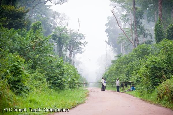 Entrée d'une concession forestière en RDC