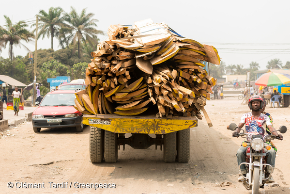 Transport de bois illégal en RDC