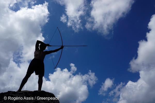 Le peuple Munduruku excelle dans l'art du tir à l'arc.