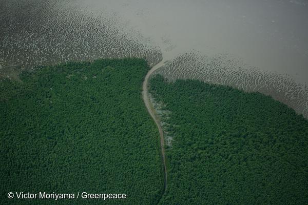 Vue aérienne du parc national du Cabo Orange.