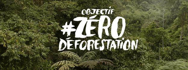 Victoire d'étape contre la déforestation