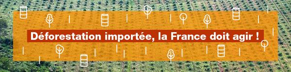 Aux arbres citoyens ! Aidez les forestiers à défendre vos forêts Header