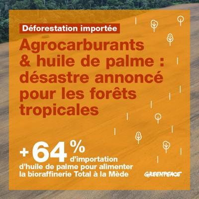 Aux arbres citoyens ! Aidez les forestiers à défendre vos forêts Image2