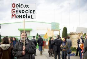 Manifestation contre Monsanto – 24 Novembre 2012
