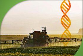 Conférence Publique le 9 février à Palaiseau : Agriculture Pesticides, OGM…