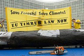 L'Union européenne doit agir contre la destruction des forêts