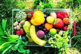 Pesticides : pour s'en débarrasser, des solutions existent !