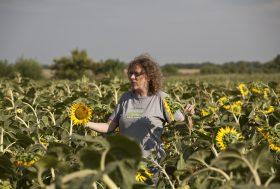 Farmers2Farmers : une plateforme pour cultiver l'agriculture écologique en Europe