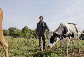 Avec FarmErasmus, les agriculteurs prennent la clé des champs.