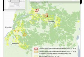 La RDC reçoit des millions pour sauver la forêt, alors qu'elle attribue des concessions illégales