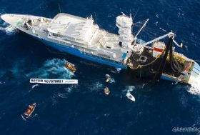 Océan Indien : la limitation de la surcapacité de pêche et la création de réserves marines deviennent urgentes