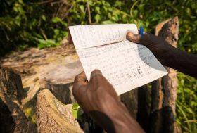 République Démocratique du Congo : quelle alternative au modèle des concessions industrielles ?