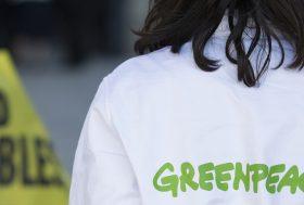 A propos de Greenpeace