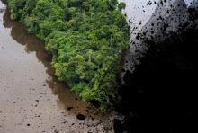 Récif de l'Amazone : grosse claque pour Total