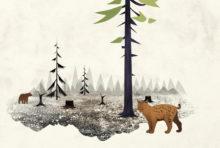Greenpeace poursuivie pour avoir défendu les forêts