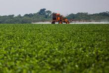 Glyphosate : Monsanto veut passer en force