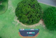 Greenpeace Tours soutient la liberté d'expression