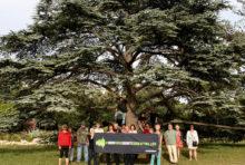La Rochelle aux côtés de Greenpeace pour soutenir la liberté d'expression