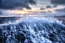 Protéger les océans, une urgence vitale