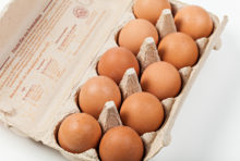 Élevage : un scandale de plus étouffé dans l'œuf ?