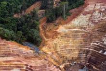Sursis pour l'Amazonie