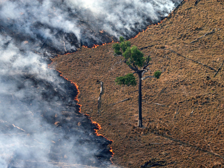 Un terrain en feu en Amazonie