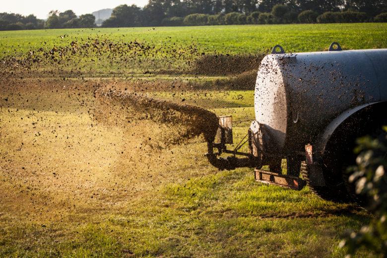 Un fermier répand du fumier sur ses terres.