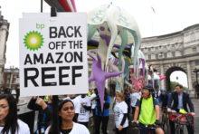 Récif de l'Amazone : les pétroliers déchantent