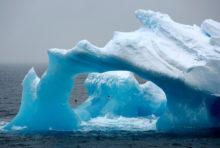 Expédition : cap sur l'océan Antarctique