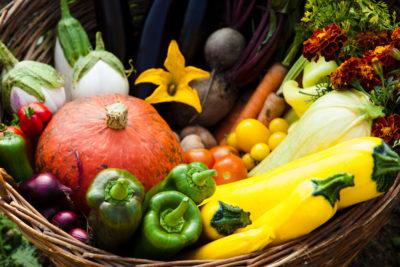 Soutenons une Politique agricole commune plus verte