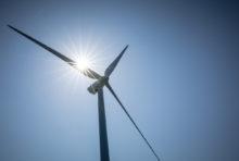 Quel est l'impact environnemental des éoliennes ?