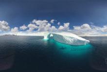 Deux millions de voix pour la protection de l'océan Antarctique