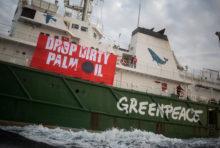 [ACTION] Huile de palme : six activistes de Greenpeace arrêtés