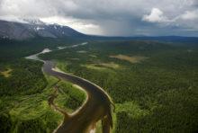 Les forêts vierges de Komi, en Russie, entrent au Patrimoine mondial de l'Unesco