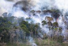 Brésil : 100e jour de deuil pour l'environnement