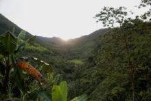 Urgence pour la biodiversité et le climat