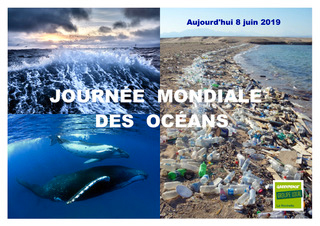 Journee-mondiale-ocean-greenpeace-2019