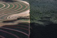 Rapport du GIEC : transformons notre système alimentaire
